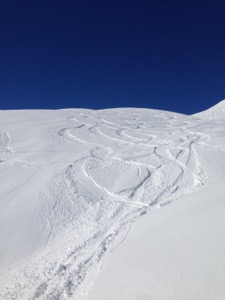 Ski tracks through fresh powder
