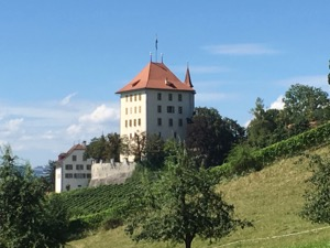 White Schloss Heidegg on hill with vineyards running down the slopes beneath it, and trees framing.