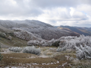 View down frost covered valley