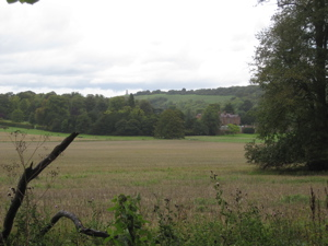 View across fields to Chequers, with Coombe Hill monument in distance