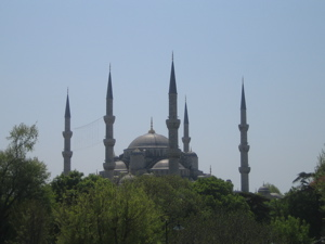 Blue Mosque above trees