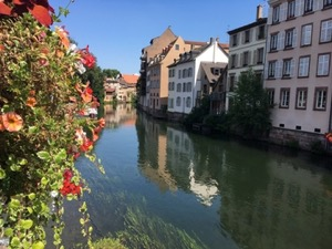 Flowers by the river in Strasbourg