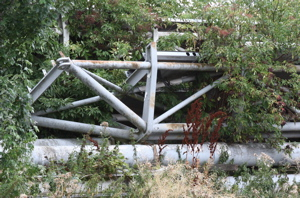 Metal Framework with bushes and young trees growing through it