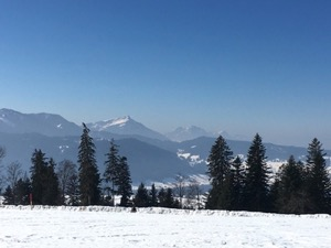 View over snow covered field with the Rigi mountain in the background