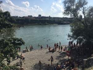 People entering the Rhein in Basel, on a bright sunny day.