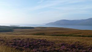 View over heather towards Islay from Jura